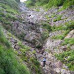 越後:水無川デトノオオナデ沢